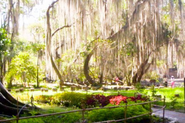 Parque Gallineral San Gil