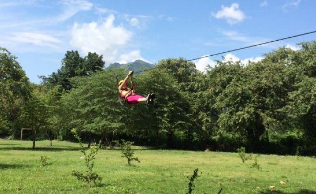 Canopy entre árboles.