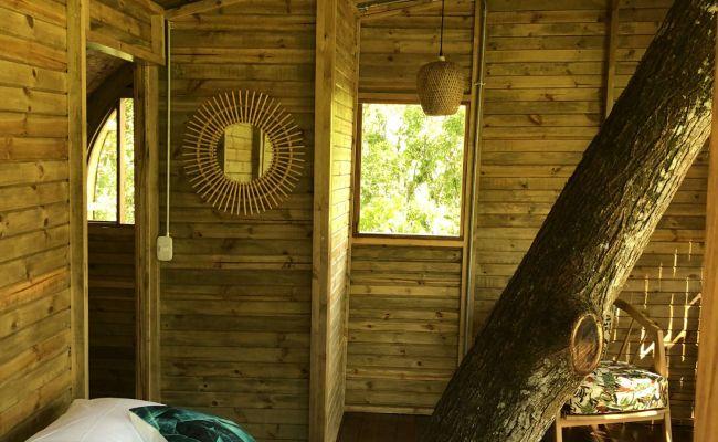 Casa en el Árbol - Habitación