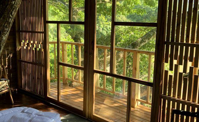 Casa en el Árbol - Vista al exterior