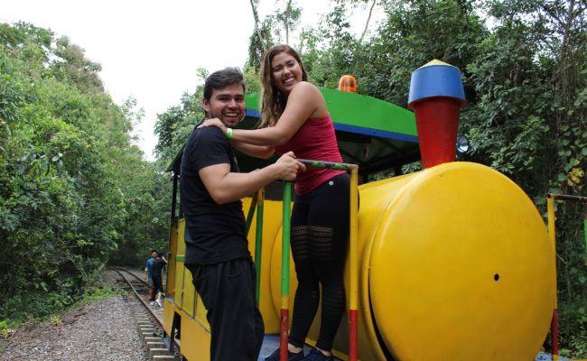 Viaje en tren artesanal